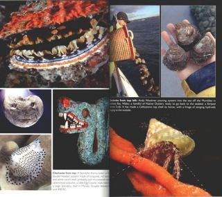 Spirals in time: the secret life and curious afterlife of seashells.