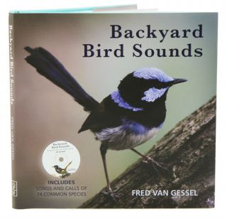 Backyard bird sounds.