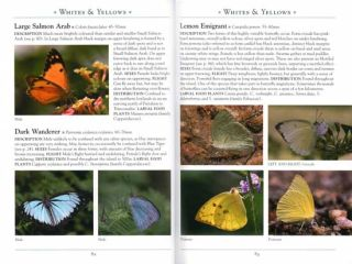 A naturalist's guide to the butterflies and dragonflies of Sri Lanka.