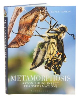 Metamorphosis: astonishing insect transformations. Rupert Soskin