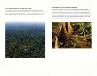 On the edge: the state and fate of the world's tropical rainforests.