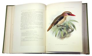 Ornithological miscellany.