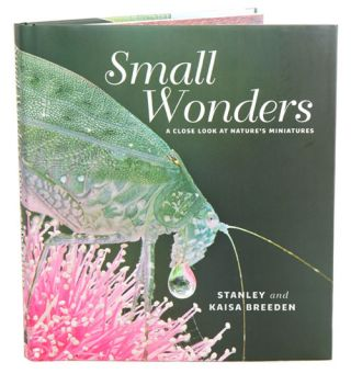 Small wonders: a close look at nature's miniatures.