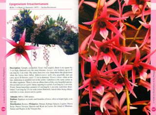 A guide to Dendrobium of the Philippines.
