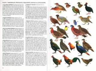 Birds of South-East Asia: concise edition.