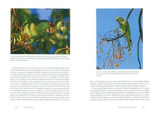 Parrots of the wild: a natural history of the world's most captivating birds.