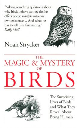 The magic and mystery of birds: the surprising lives of birds and what they reveal about being human.