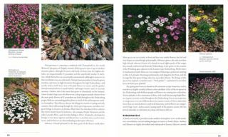 Steppes: the plants and ecology of the world's semi-arid regions.