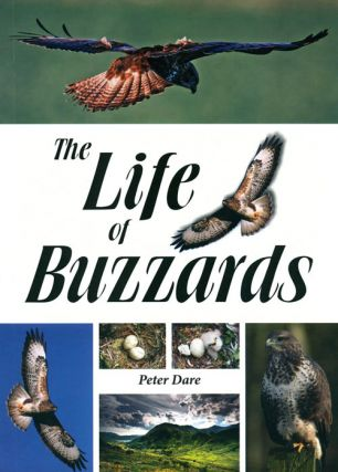 The life of buzzards. Peter Dare