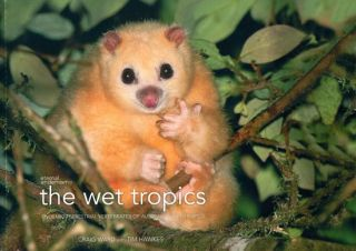The wet tropics: endemic terrestrial vertebrates of Australia's wet tropics. Craig Ward, Tim Hawkes