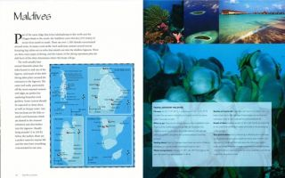 World's best tropical dive destinations: Asia-Pacific, Caribbean, Indian Ocean and the Red Sea.