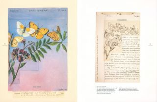 Butterflies of North America: Titian Peale's lost manuscript.