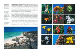 Life amongst the thorns: biodiversity and conservation of Madagascar's Spiny forest.