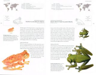 Book of frogs: a lifesize guide to six hundred species from around the world.