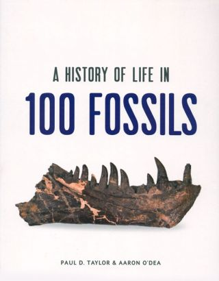 A history of life in 100 fossils. Paul D. Taylor, Aaron O'Dea