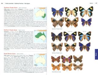 The complete field guide to butterflies of Australia.