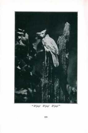 Homing with the bird : the history of a lifetime of personal experience with the birds.