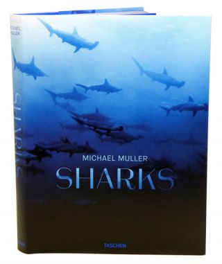 Sharks: face to face with the ocean's endangered predator. Michael Muller
