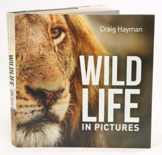Wildlife in pictures. Craig Hayman.