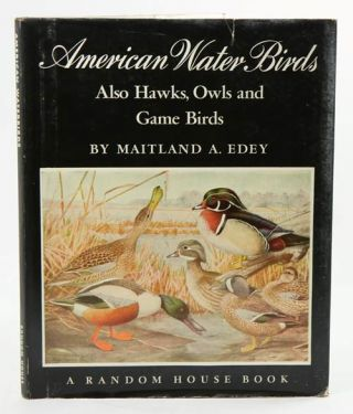 American water birds: also hawks, owls and game birds. Maitland A. Edey.