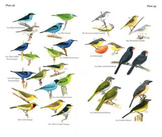 Field guide to the birds of Suriname.
