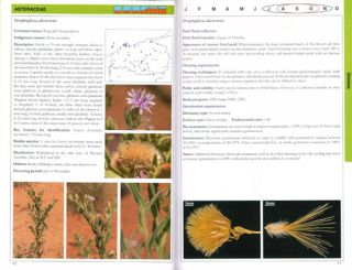 Pilbara seed atlas and field guide: plant restoration in Australia's arid northwest.