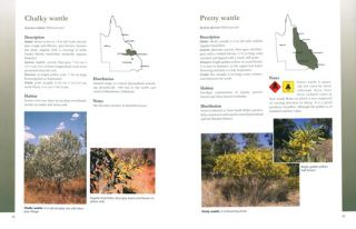 Plants of central Queensland: identification and uses of native and introduced species.
