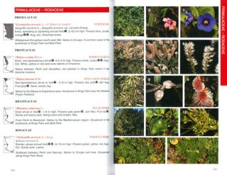 Perth plants: a field guide to the bushland and coastal flora of Kings Park and Bold Park.