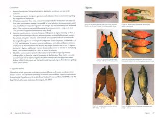 Birds of New Guinea: distribution, taxonomy and systematics.