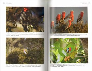 The complete guide to finding birds of Australia.