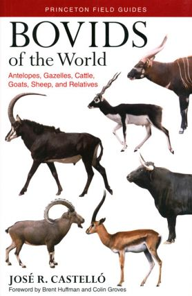 Bovids of the world: antelopes, gazelles, cattle, goats, sheep and relatives. Jose R. Castello.