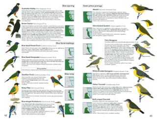 Birds of the wet tropics of Queensland and Great Barrier Reef and where to find them.
