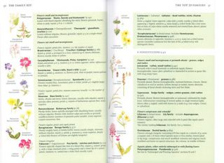 Collins wild flower guide: the most complete guide to the wild flowers of Britain and Ireland.
