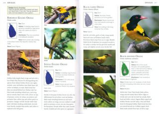 A photographic guide to the birds of Sri Lanka.