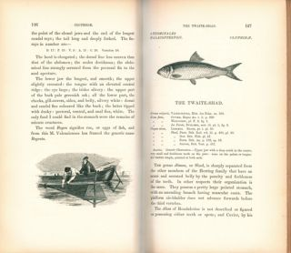 A history of British fishes.