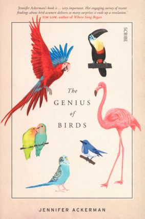 The genius of birds. Jennifer Ackerman.