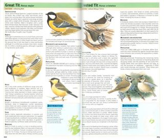 RSPB handbook of Scottish birds.
