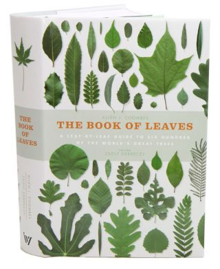 The book of leaves: a leaf-by-leaf guide to six hundred of the world's great trees. Allen J. Coombes, Zsolt Debreczy.