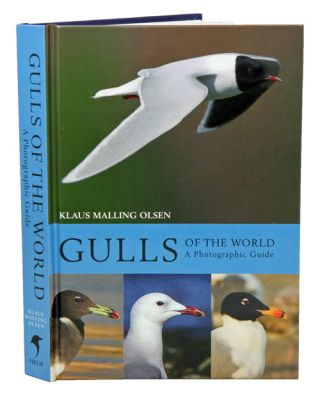 Gulls of the world: a photographic guide. Klaus Malling Olsen.