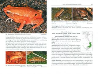 A photographic field guide to the amphibians and reptiles of the lowland monsoon forests of southern Vietnam.