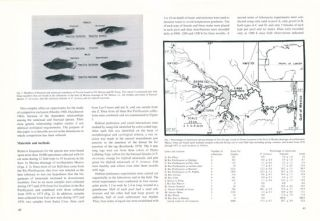The ecology and ethology of fishes.