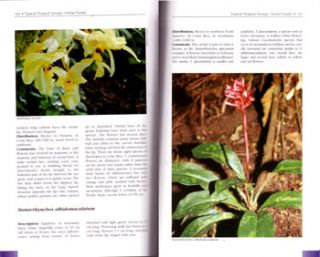 Tropical plants of Costa Rica: a guide to native and exotic flora.