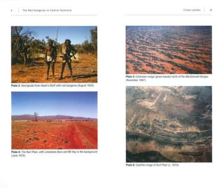 Red kangaroo in Central Australia: an early account by A.E. Newsome.