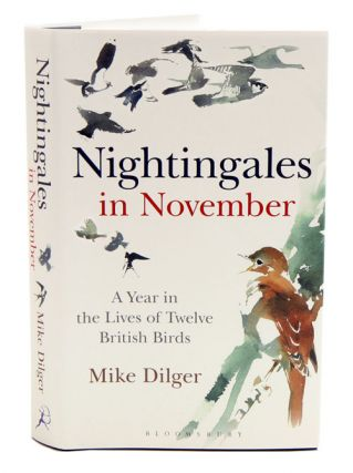 Nightingales in November: a year in the lives of twelve British birds. Mike Dilger.