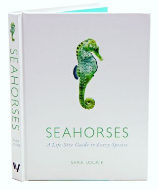 Seahorses: a life-size guide to every species. Sara Lourie