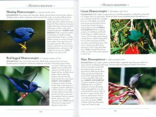 A naturalist's guide to the birds of Costa Rica.