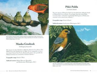 Extinct birds of Hawai'i.