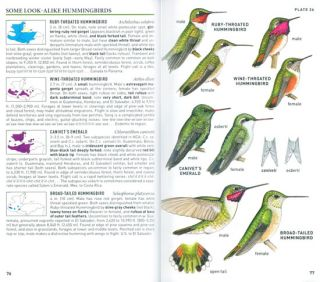 Peterson field guide to birds of northern Central America.