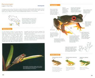 Amphibians of Costa Rica: a field guide.