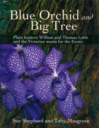 Blue orchid and big tree: plant hunters William and Thomas Lobb and the Victorian mania for the exotic. Sue Shephard, Toby Musgrave.